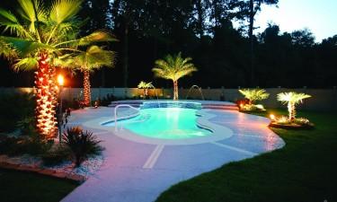 Custom Pools Bent Palm